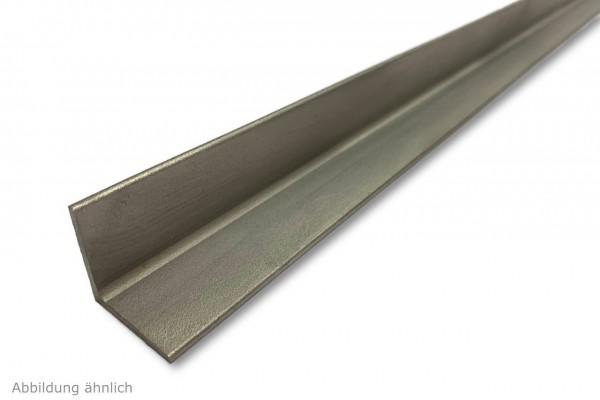 Winkel 1.4301 V2A - Länge 1000 mm